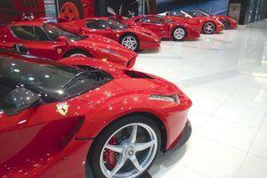 Toutes les supercars Ferrari de la collection.