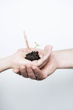 Plantez un crayon, vous aurez une plante.