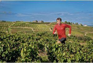 François D'Haene, un vigneron pressé