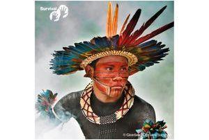 Les peuples indigènes, vus par tous
