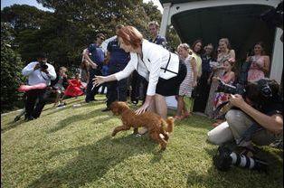 Le Premier ministre australien Julia Gillard