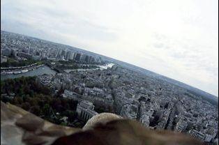 Dans le ciel parisien