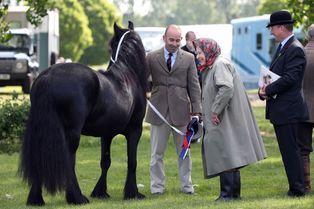 Elizabeth au naturel pour ses chers chevaux