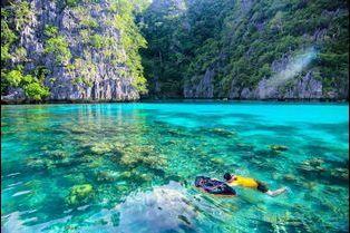 Les plus beaux spots de plongée du monde