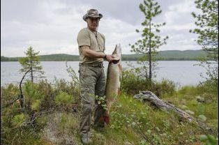 Vladimir Poutine pêche en Sibérie, en juillet 2013