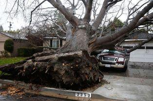 Avis de tempête sur la Californie