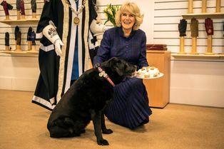 La duchesse de Cornouailles séduit Ruby avec un gâteau