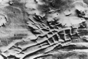 Dans sa jeunesse, Mars a pu héberger de vastes glaciers