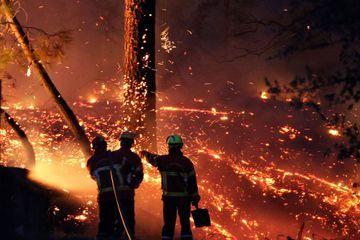 """Incendie d'Anglet : le feu est """"d'origine humaine"""""""