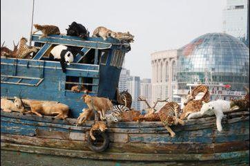 L'incroyable arche de Noé de l'artiste chinois Cai Guo-Qiang