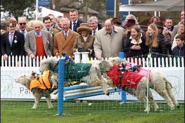 Camilla et Charles jouent à saute-mouton