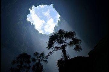Un écosystème naturel dans un trou de 290 mètres
