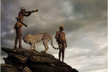 Le guépard qui ne craignait pas les chasseurs