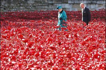 La reine Elizabeth II cueille les fleurs du souvenir