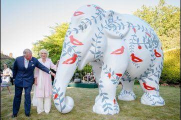 Charles et Camilla au secours des éléphants d'Asie