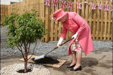 Elizabeth florale pour planter un arbre