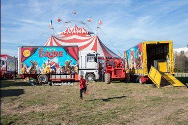 Enfants de cirque : derniers témoins d'une tradition en voie d'extinction ?