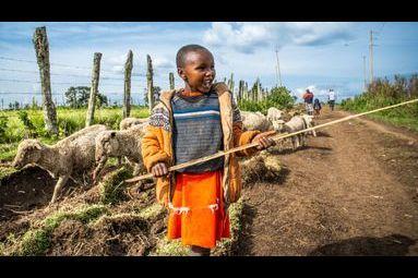 La précarité des peuples de la langue Maa dans la Vallée du Rift