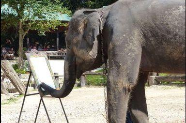 Les éléphants artistes peintres