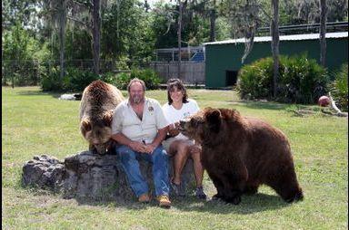 Dans leur jardin... 13 ours