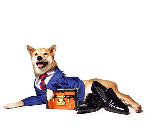 Bodhi pose pour Lucky Magazine en juillet 2014