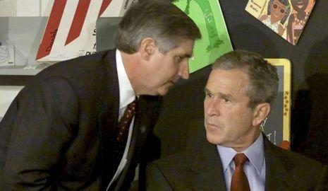 Bush-