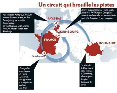 Circuit Viande Graphique-