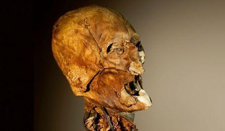 Henri IV-Henri IV, tête momifiée