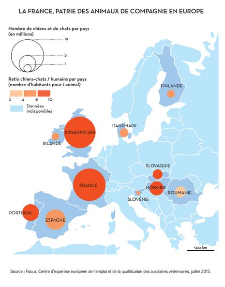 La France des animaux domestiques en 2050