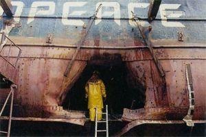 le-rainbow-warrior-navire-amiral-de-greenpeace-coule-dans-le-port-daucklandrainbowwr01-