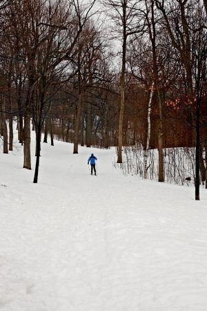 Ski de fond sur le Mont-Royal à Montréal