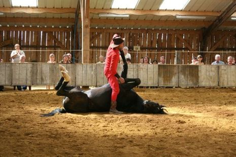 Spectacle-Haras-national-du-Lion-d'Angers©Mc-Arnaud-Ranch-(3)-