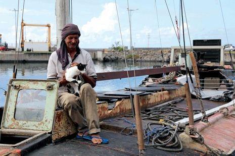 Zbigniew présente Samira, petite chatte recueillie aux Comores, nourrie avec du thon pendant sept mois.
