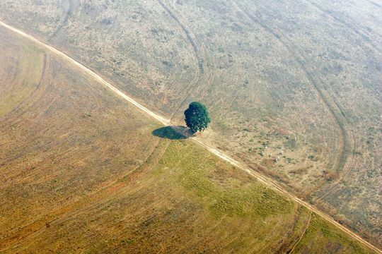 La planète vit au-dessus de ses moyens écologiques