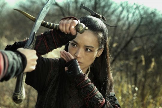 "Pourquoi ""The Assassin"" sera Palme d'or"