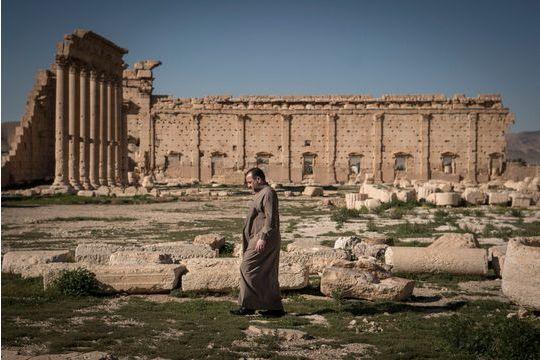 Palmyre n'est pas qu'un musée à ciel ouvert
