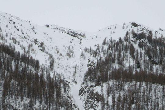 Avalanche meurtrière dans les Alpes