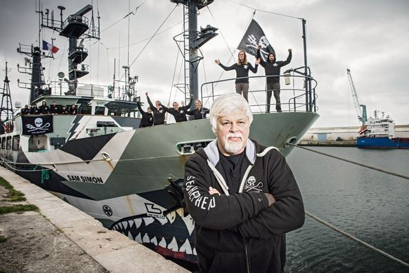 Paul Watson, preux chevalier du grand large