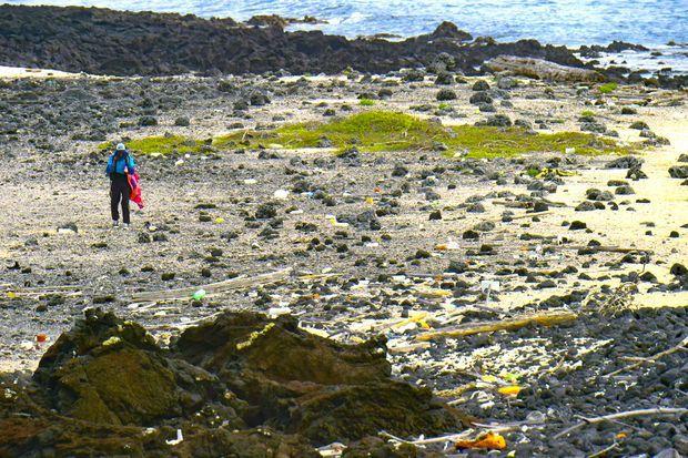 Des ordures de toutes sortent s'accumulent face aux côtes.
