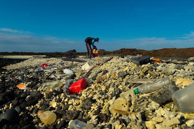 Un bénévole ramasse les déchets plastique sur les plages des Galapagos.