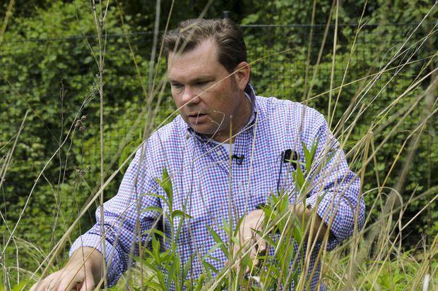 "Chris Swan dans son ""jardin-jungle""."