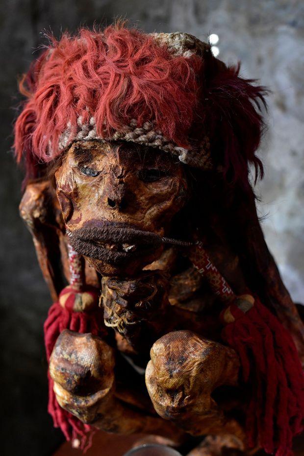 Une momie Inca au parc zoologique Pairi Daiza.