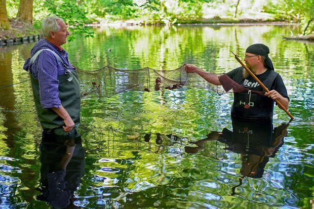 A gauche, Klaus Hidde, pêcheur berlinois, en train d'attraper des écrevisses de Louisiane.