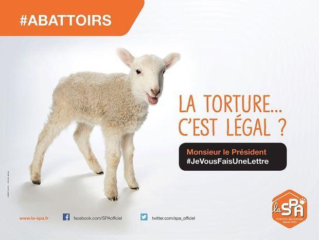 La nouvelle campagne de la SPA contre les abattoirs hors-la-loi.