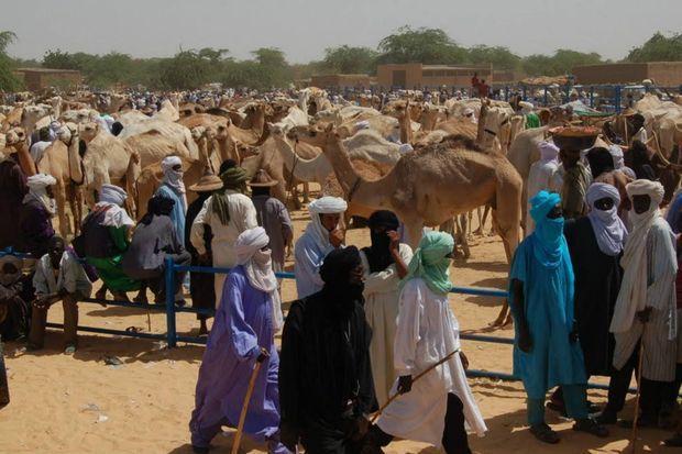 La ville d'Abalak est située à 500 kilomètres au Nord Est de Niamey, la capitale du Niger