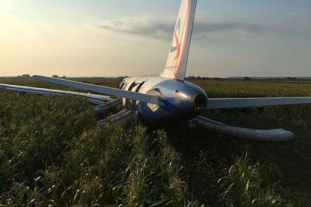 L'appareil a atterri dans un champ de maïs.