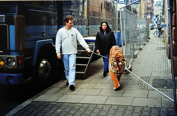 Dans les années 2000. Thierry et Sandrine emmènent leur tigre dans la salle où ils se produisent, à Francfort… dont Rambo raffole des saucisses !