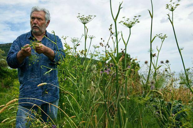 Fils de paysans napolitains, Bruno Cirino puise son inspiration dans la nature. Ici, en Ligurie.
