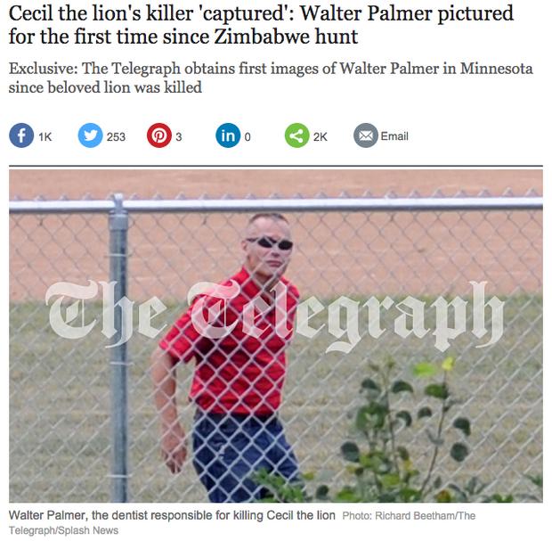 """Capture d'écran du """"Telegraph"""", qui publie ces images récentes de Walter Palmer."""