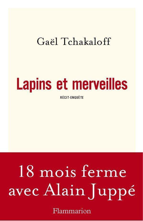 """""""Lapins et merveilles"""" de Gaël Tchakaloff, ed Flammarion."""